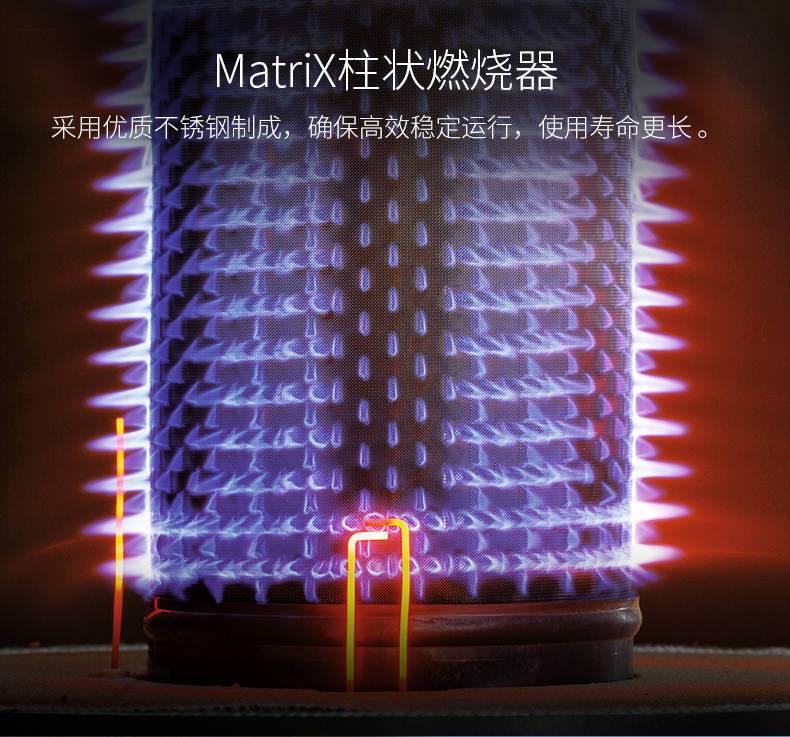 菲斯曼壁挂炉国产冷凝26kw天然气锅炉